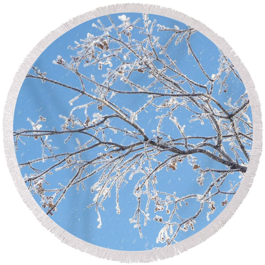 Hoar Frost Round Beach Towel featuring the photograph Frosty Branch by Ruth Kamenev