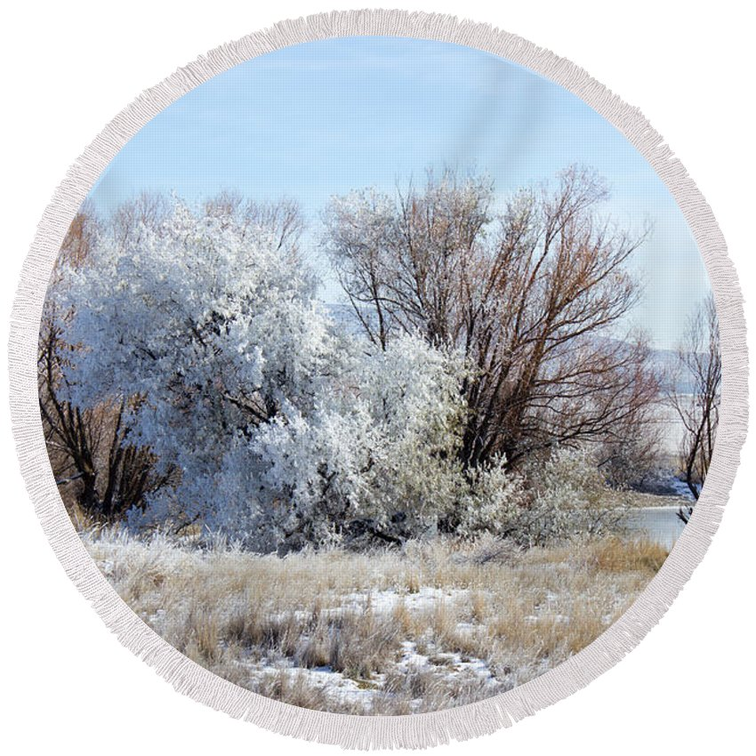 Frozen Round Beach Towel featuring the photograph Frozen Trees By The Lake by Alexander Ferguson