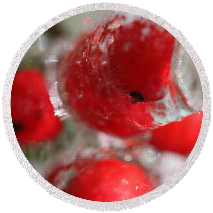 Berries Round Beach Towel featuring the photograph Frozen Winter Berries by Nadine Rippelmeyer