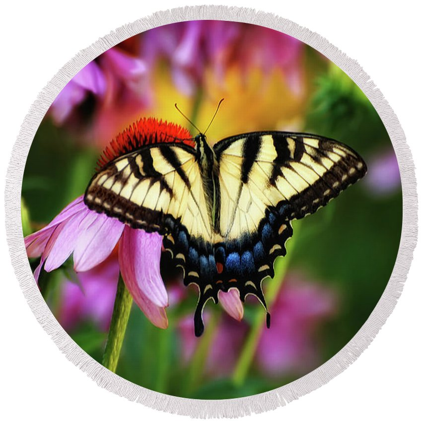 Butterfly Round Beach Towel featuring the photograph Garden Jewelry by Lois Bryan