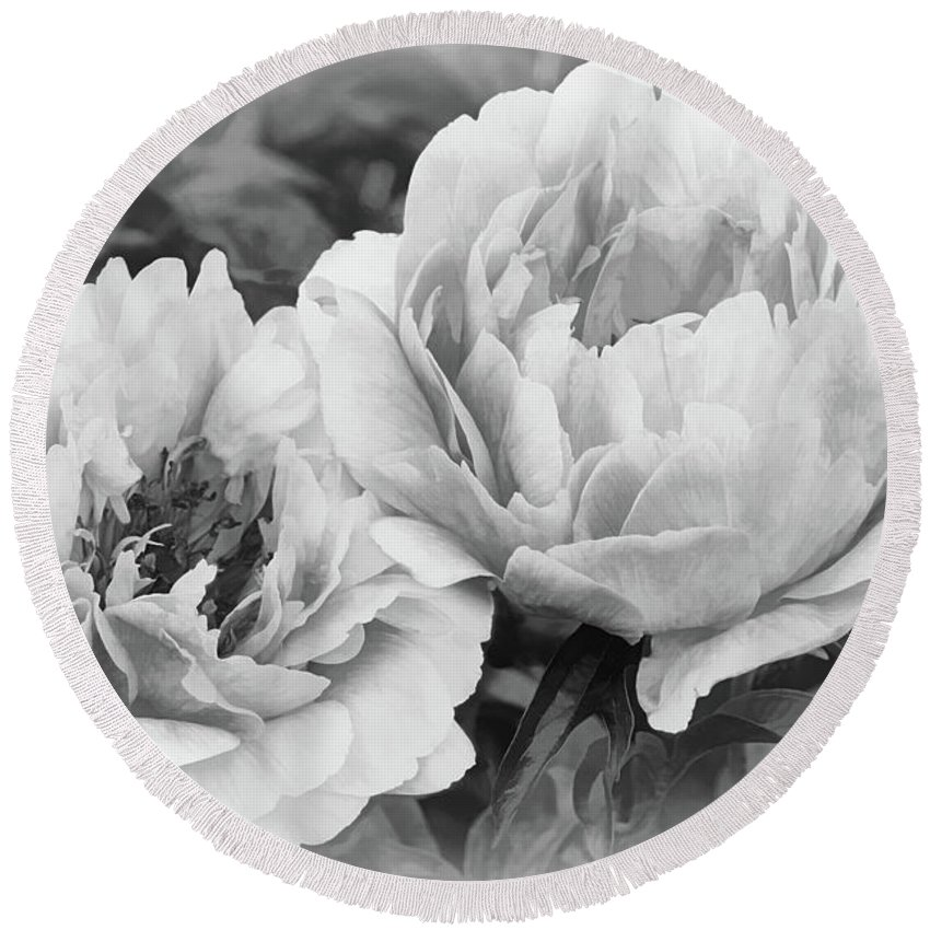 Peony Round Beach Towel featuring the photograph Garden Peonies by Leda Robertson