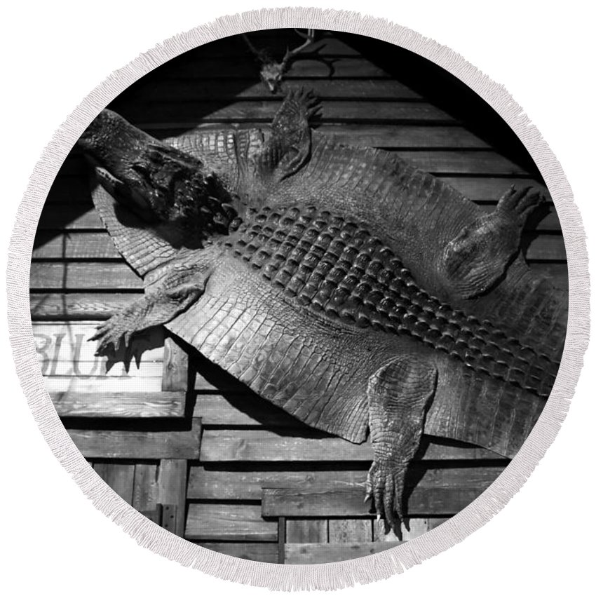 Alligator Round Beach Towel featuring the photograph Gator Hide by David Lee Thompson