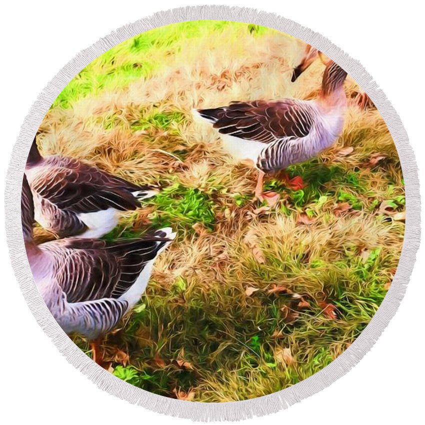 Alicegipsonphotographs Round Beach Towel featuring the photograph Geese In The Yard by Alice Gipson