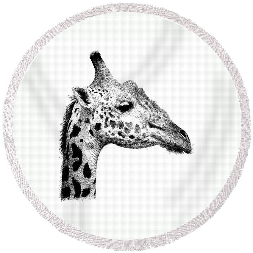 Giraffe Round Beach Towel featuring the drawing Giraffe by Scott Woyak