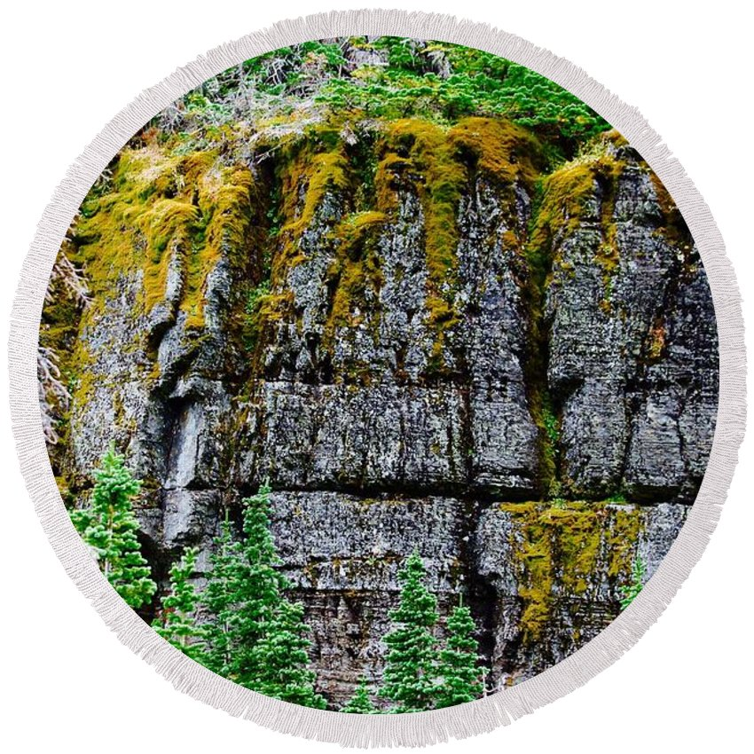 Round Beach Towel featuring the photograph Glacier Np Moss by Matthew Justis