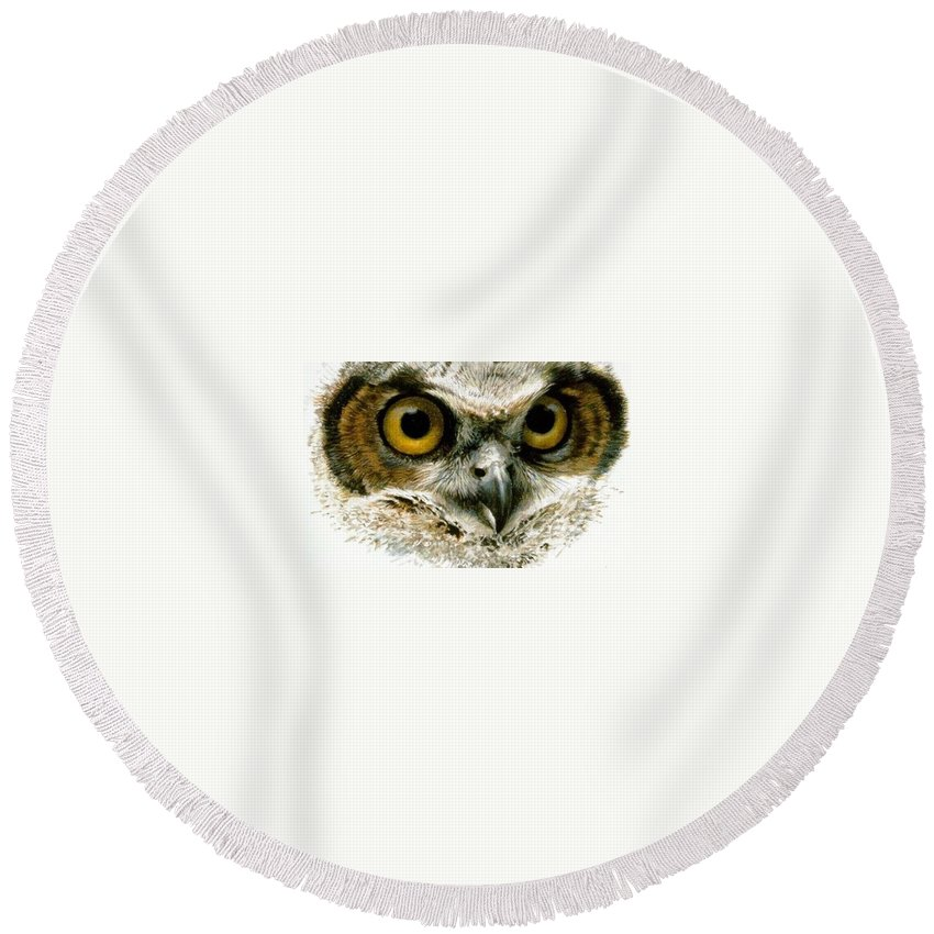 Owl Round Beach Towel featuring the digital art Glance by Hedwig Pen