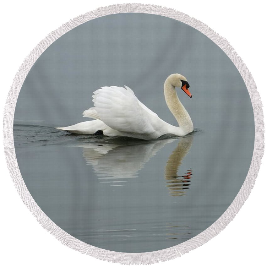 Swann Round Beach Towel featuring the photograph Gliding Swan by Andrew Ford