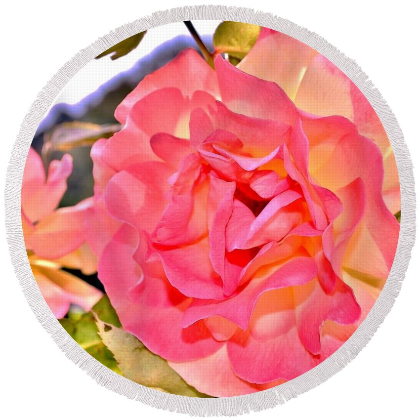 Pink Rose Round Beach Towel featuring the photograph Glowing Pink Rose Petals by Kim Bemis