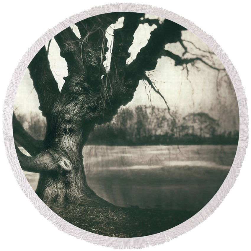 Gnarled Round Beach Towel featuring the photograph Gnarled Old Tree by Scott Norris