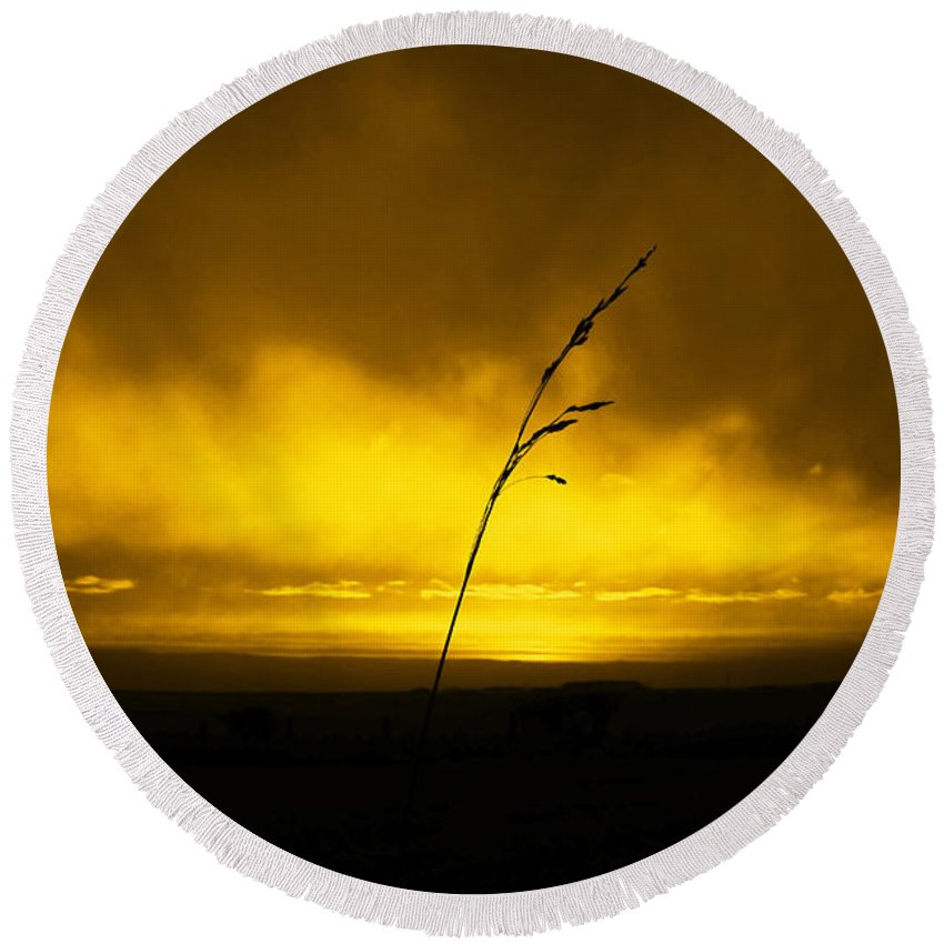 Black Round Beach Towel featuring the photograph Gold Sunset And Grass by Svetlana Sewell