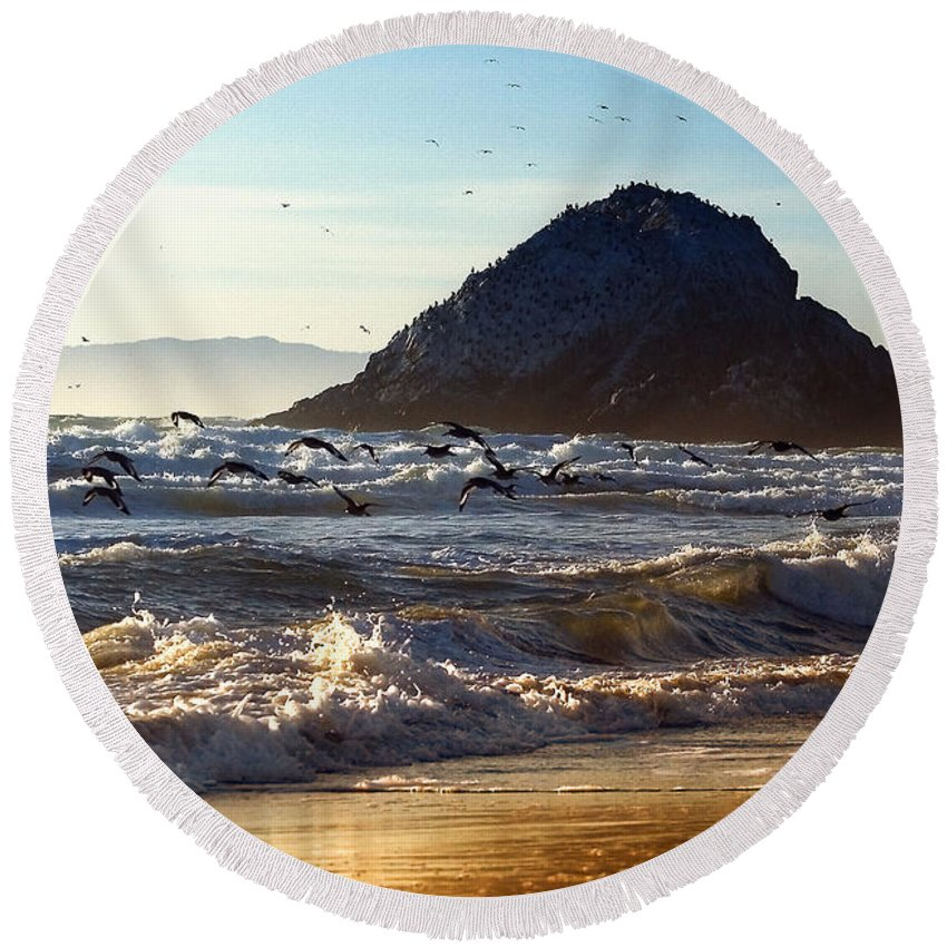 Nature Round Beach Towel featuring the photograph Golden Day by John K Sampson