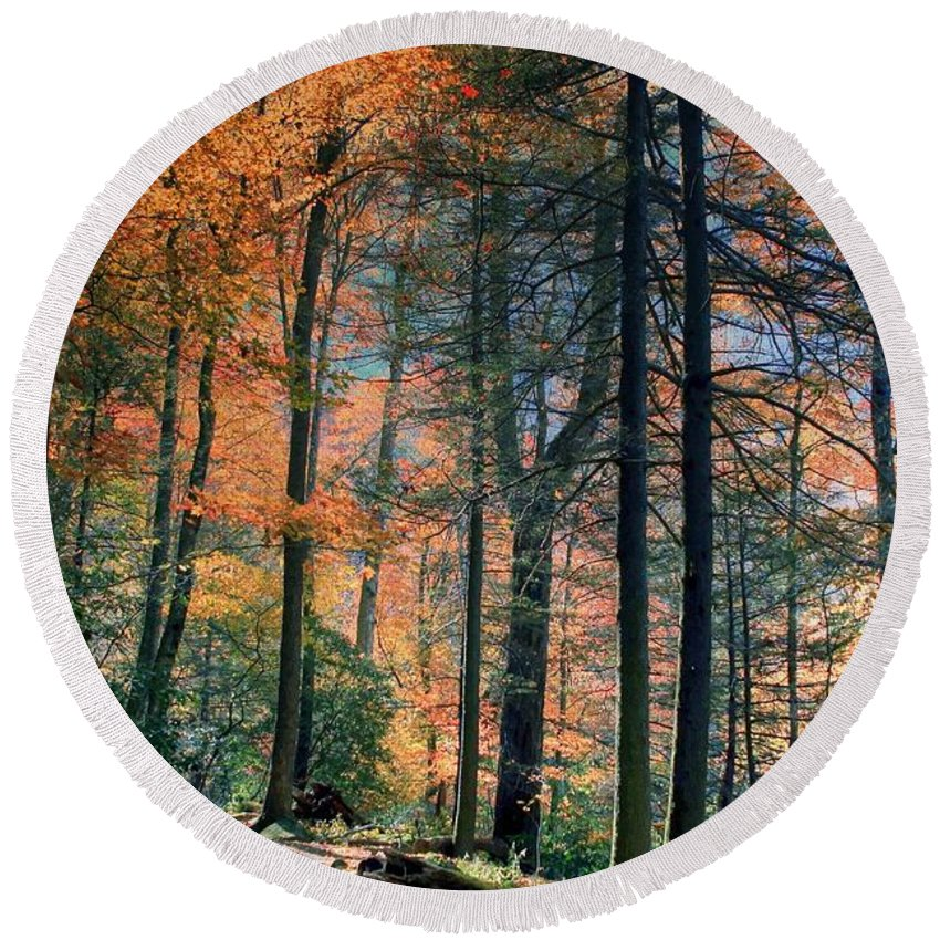 Nature Round Beach Towel featuring the photograph Golden Forest Path by Randy Matthews