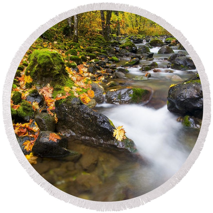 Fall Round Beach Towel featuring the photograph Golden Grove by Mike Dawson