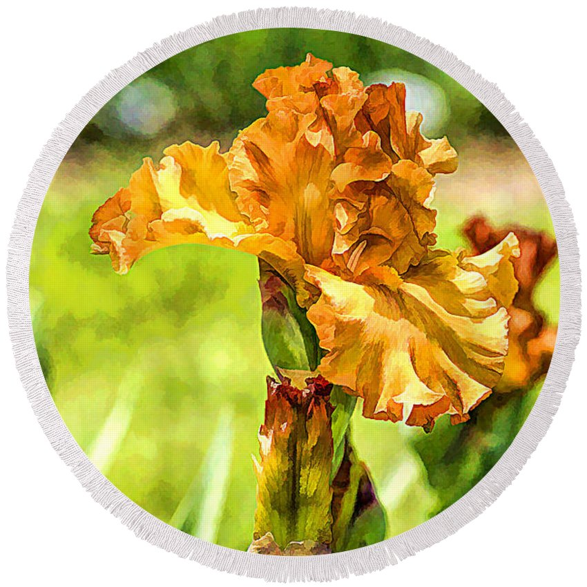Recent Round Beach Towel featuring the photograph Golden Iris by Geraldine Scull