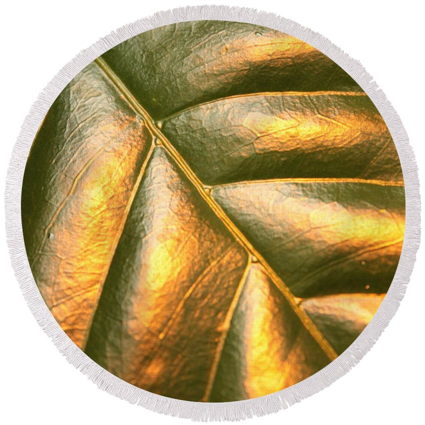 Gold Round Beach Towel featuring the photograph Golden Leaf by Carol Groenen