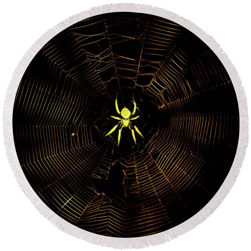 Spider Round Beach Towel featuring the photograph Golden Silk by Mark Andrew Thomas