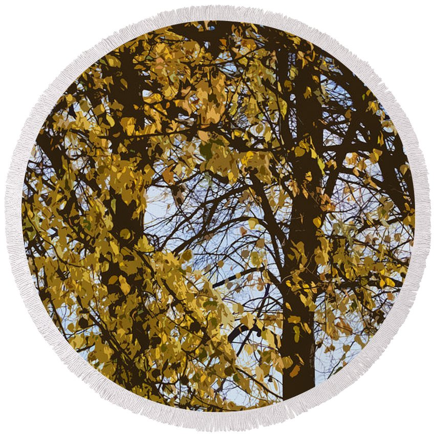 Autumn Round Beach Towel featuring the photograph Golden Tree 2 by Carol Lynch