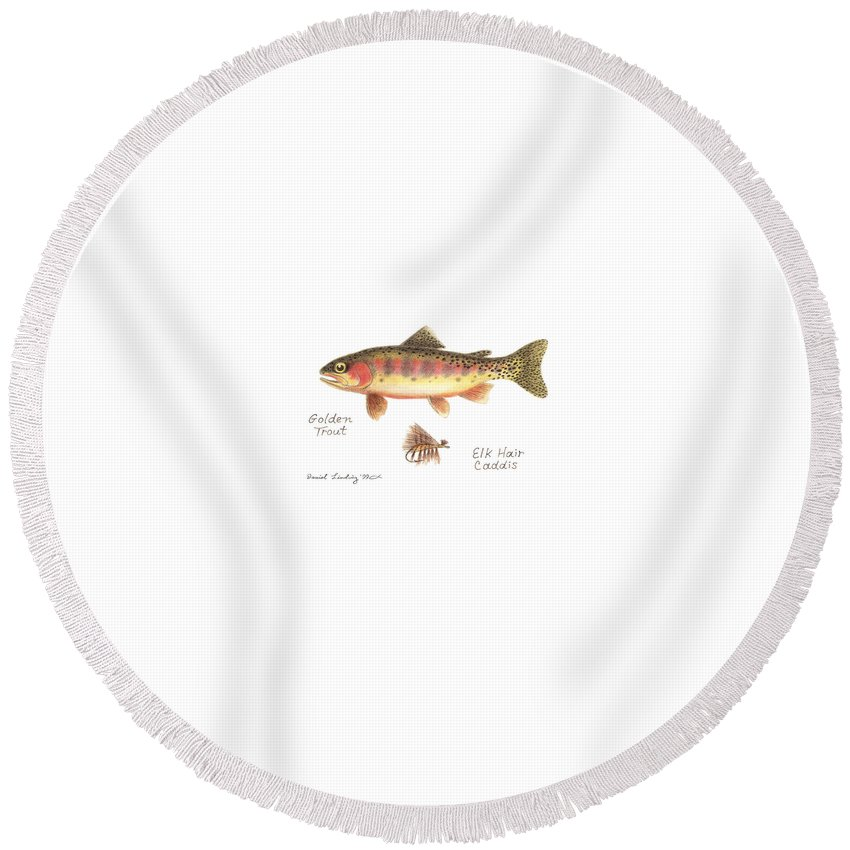 Fish Round Beach Towel featuring the drawing Golden Trout And Elk Hair Caddis Fly by Daniel Lindvig