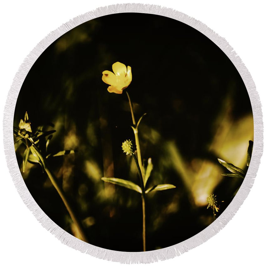 Flowers Round Beach Towel featuring the photograph Golden Twinkles by JB Thomas
