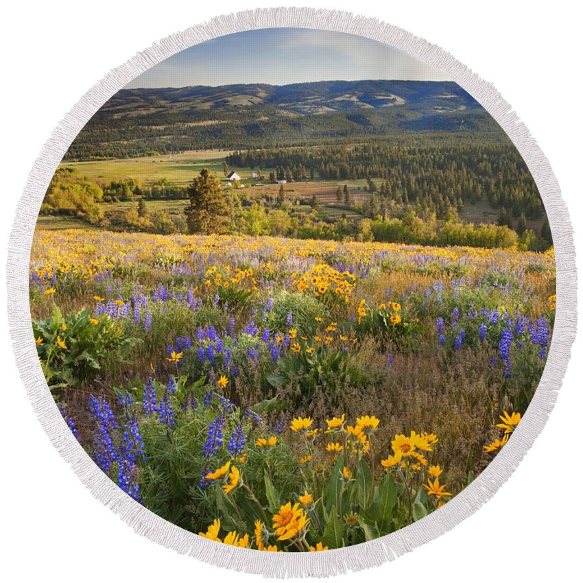 Wildflowers Round Beach Towel featuring the photograph Golden Valley by Mike Dawson