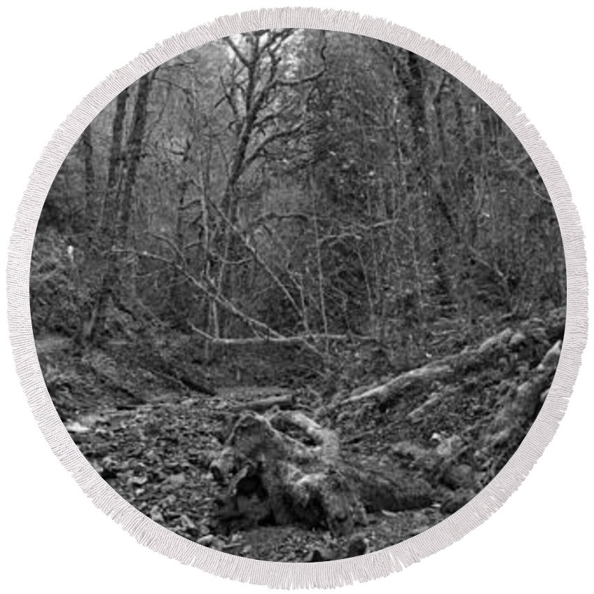 Bw Round Beach Towel featuring the photograph Goldstream Provincial Park Black And White by Adam Jewell