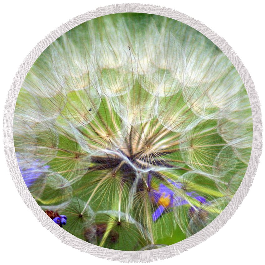 Round Beach Towel featuring the photograph Gone To Seed by Marty Koch