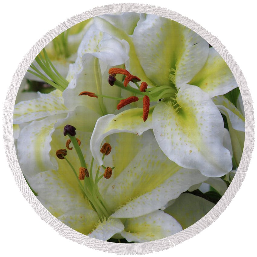 Lily Round Beach Towel featuring the photograph Gorgeous Cluster Of Blooming White Lilies In A Bouquet by DejaVu Designs