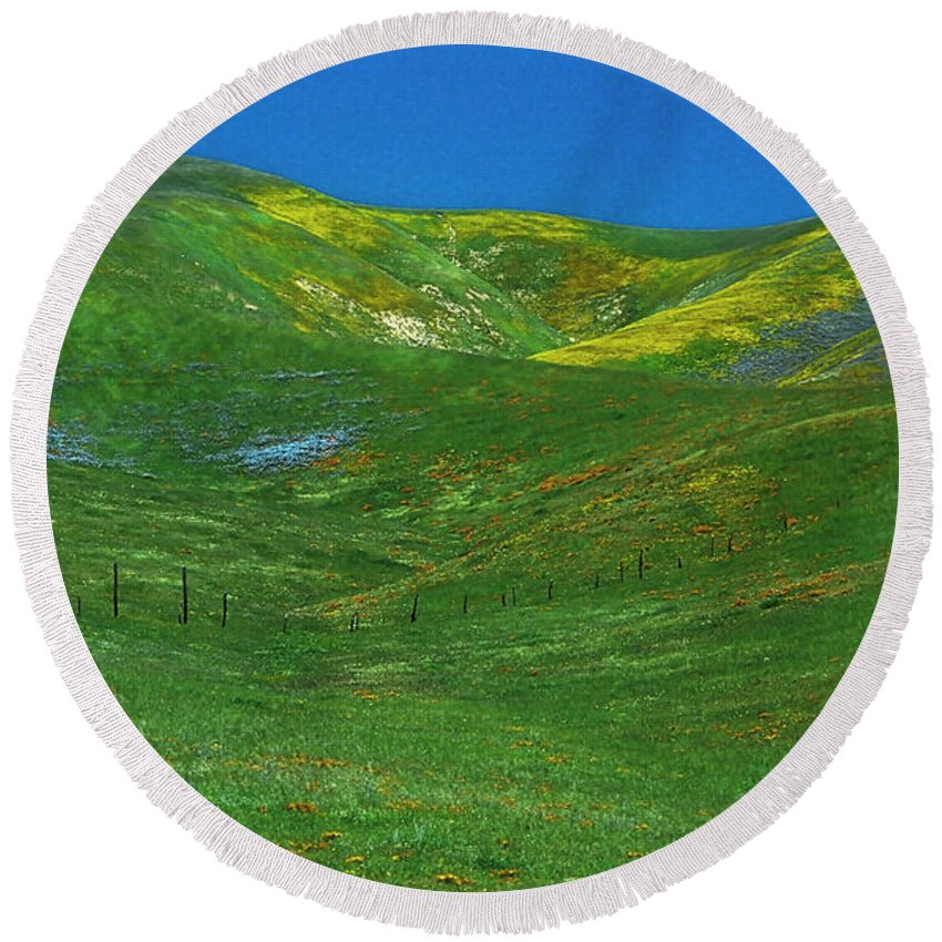 Nature Round Beach Towel featuring the photograph Gorman Wildflowers by Joe Palermo