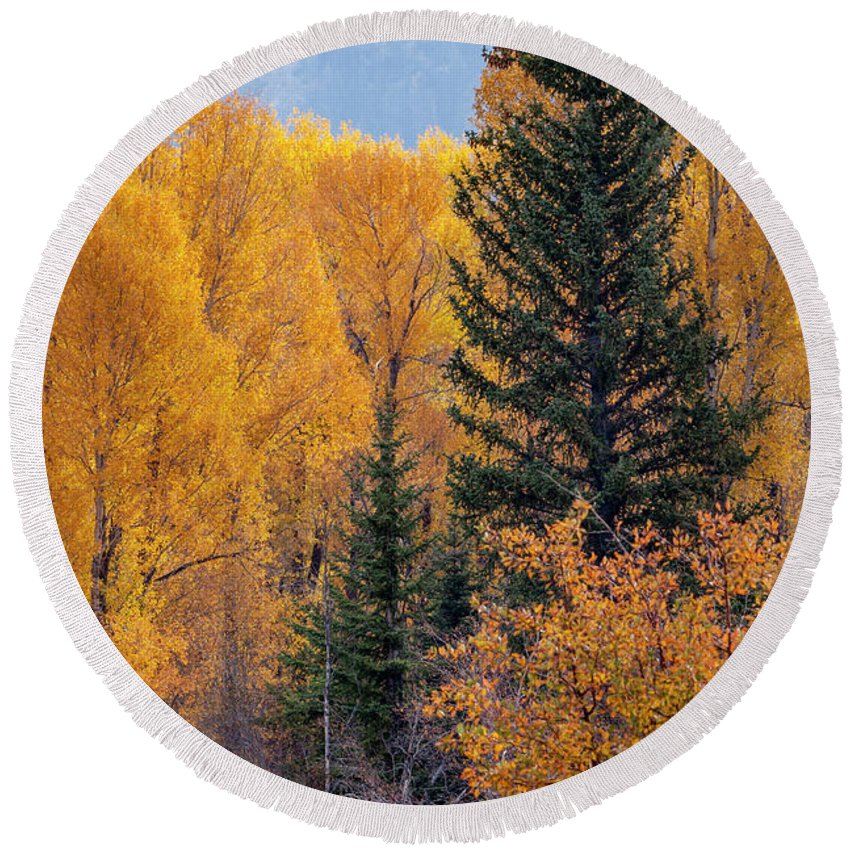 Cindy Archbell Round Beach Towel featuring the photograph Grand Teton Fall by Cindy Archbell
