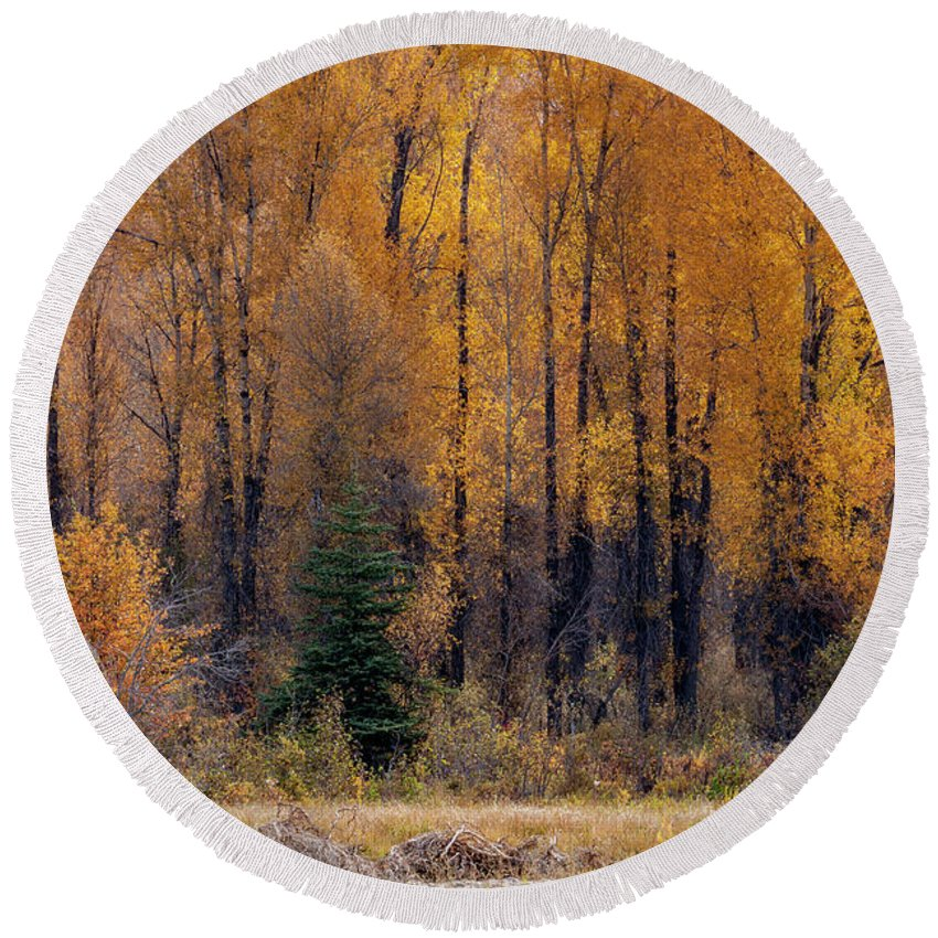 Cindy Archbell Round Beach Towel featuring the photograph Grand Tetons Fall by Cindy Archbell
