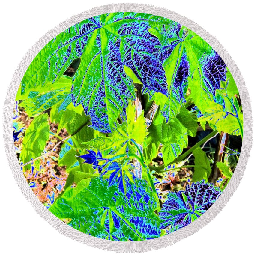 Grape Leaves Round Beach Towel featuring the digital art Grape Leaves by Will Borden