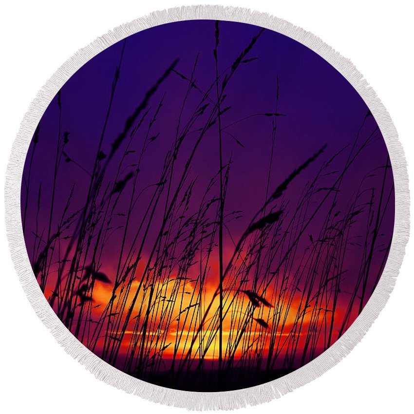 Black Round Beach Towel featuring the photograph Grass At Dusk by Svetlana Sewell