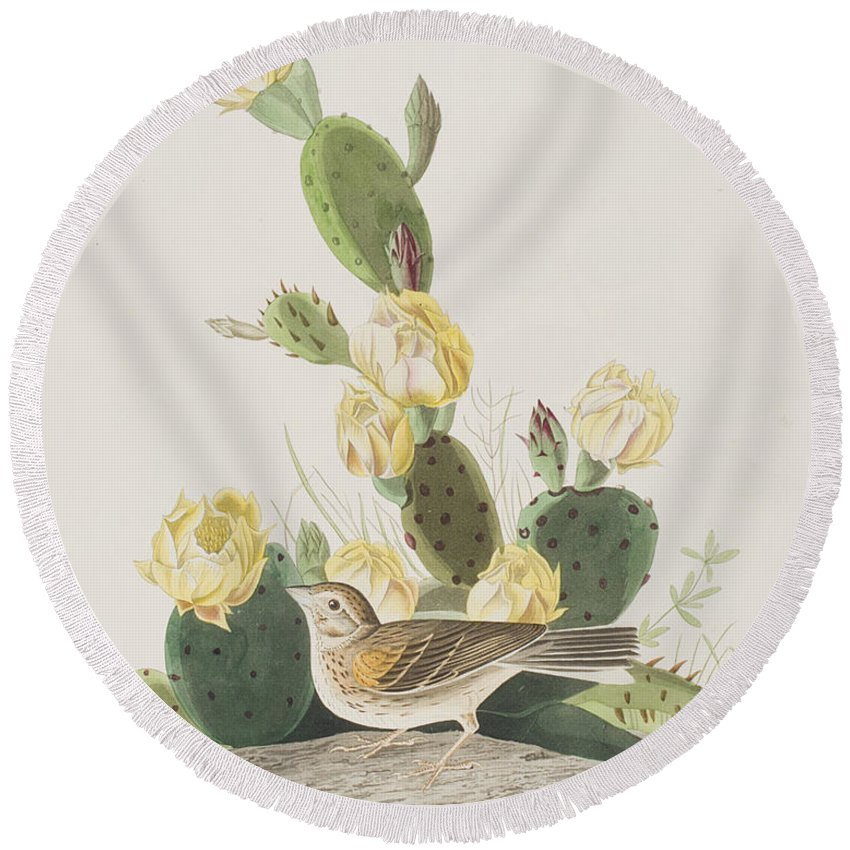 Finch Round Beach Towel featuring the painting Grass Finch Or Bay Winged Bunting by John James Audubon