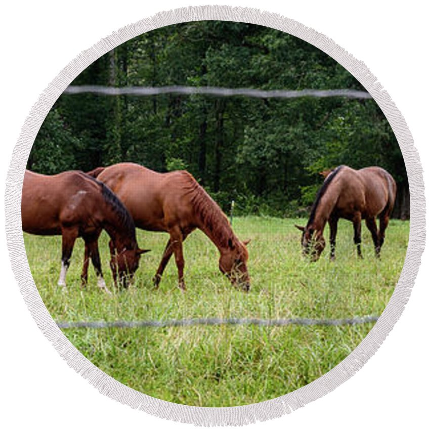 Grazing Horses Round Beach Towel featuring the photograph Grazing Horses - Cades Cove - Great Smoky Mountains Tennessee by Jon Berghoff