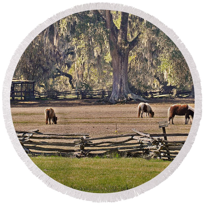 Pony Round Beach Towel featuring the photograph Grazing Ponies by Aaron Shortt