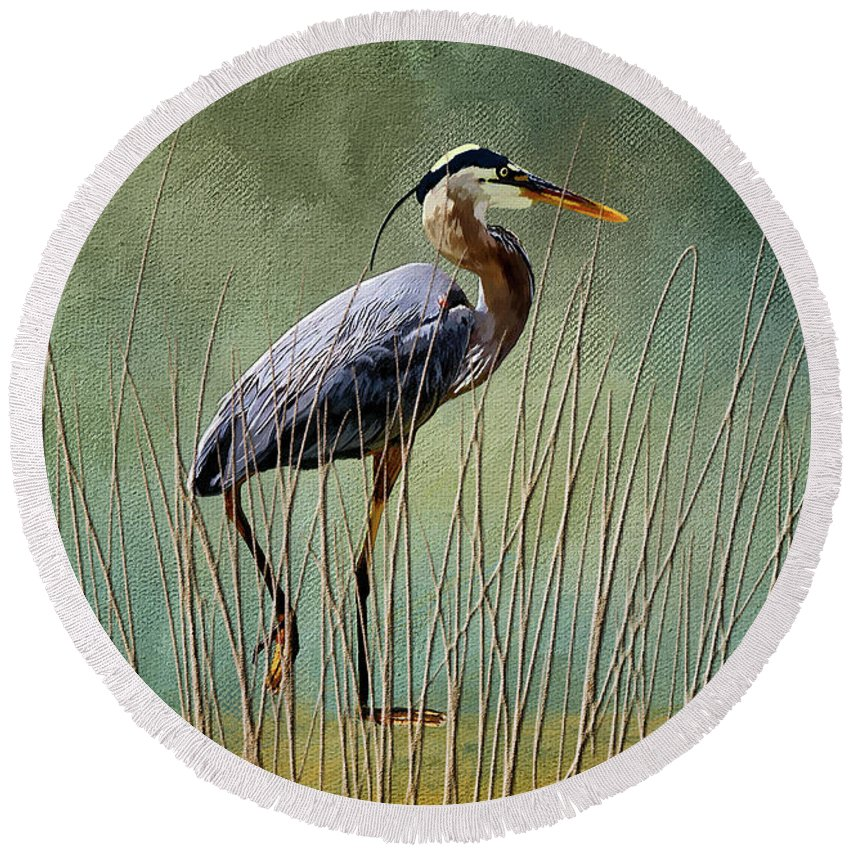 Great Blue Heron Beach Products