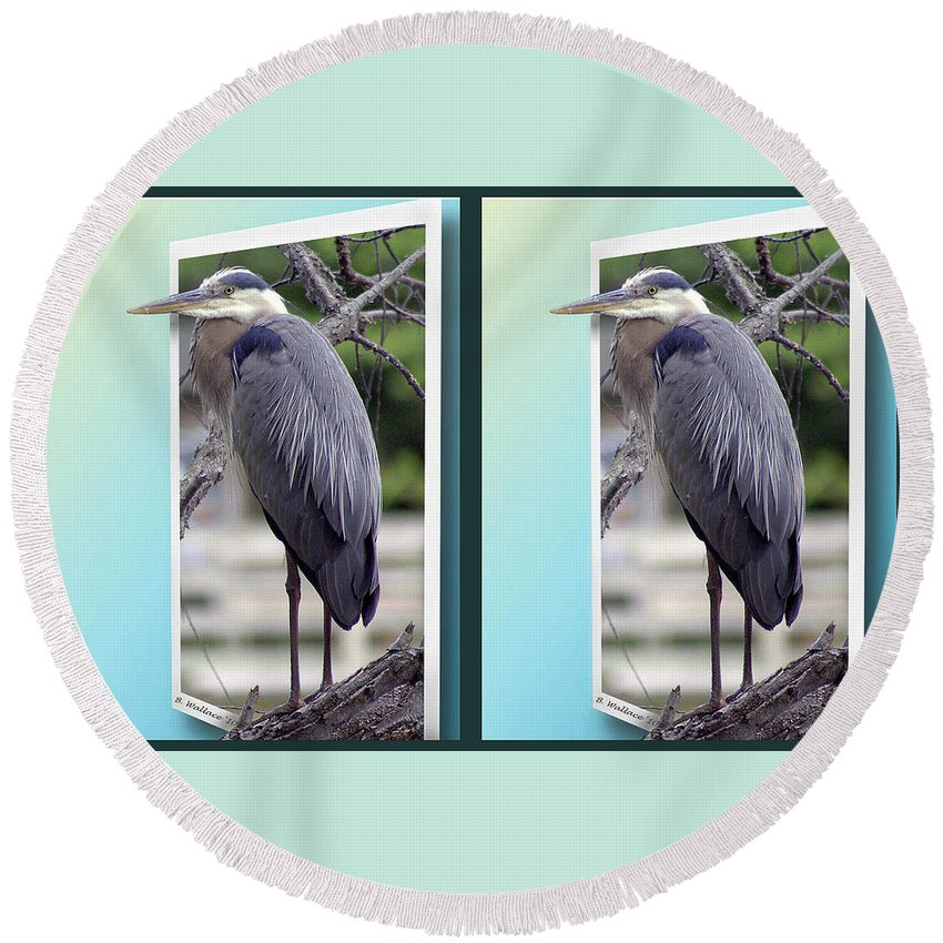 3d Round Beach Towel featuring the photograph Great Blue Heron - Gently Cross Your Eyes And Focus On The Middle Image by Brian Wallace