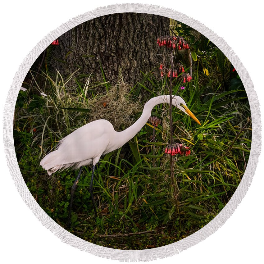 Great Egret Round Beach Towel featuring the photograph Great Egret In The Garden by Zina Stromberg