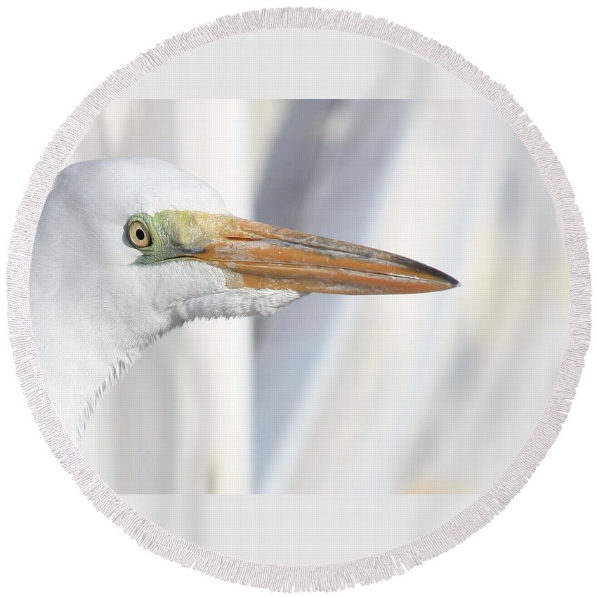Great Egret Round Beach Towel featuring the photograph Great Egret Profile 2 by Carol Groenen
