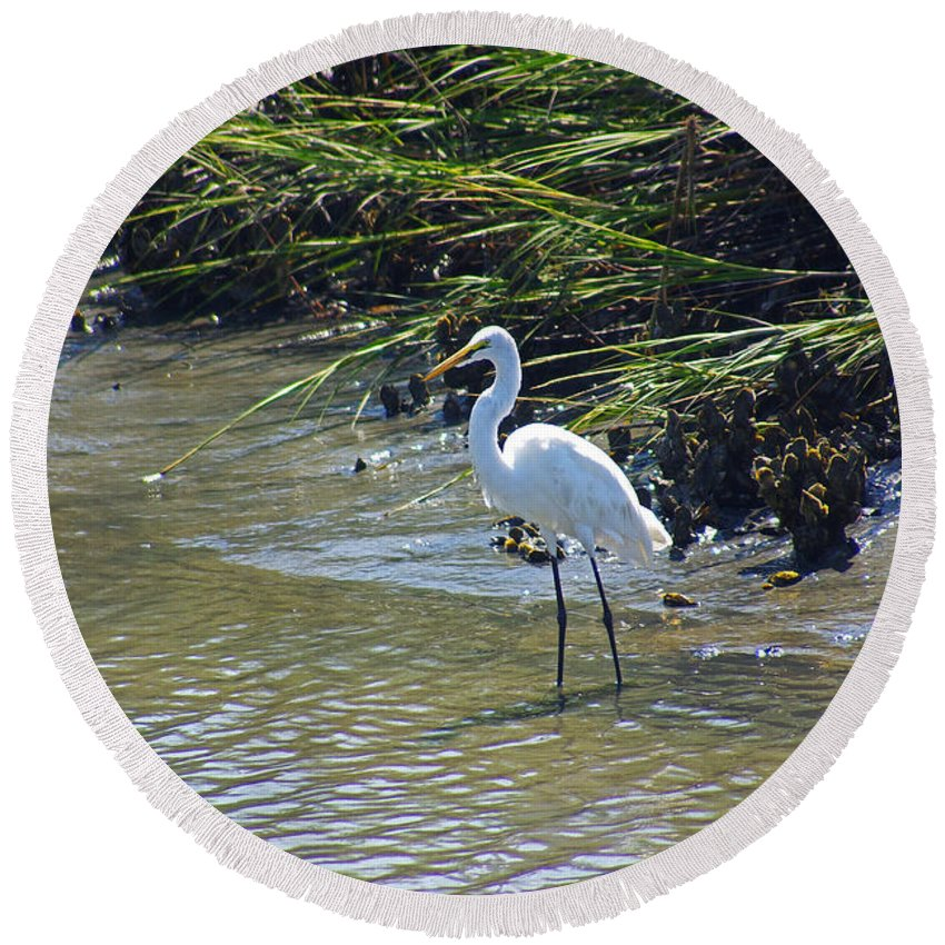South Carolina Round Beach Towel featuring the photograph Great Egret by Rich Walter
