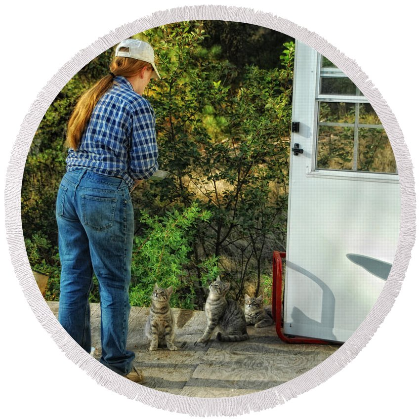 Cats Round Beach Towel featuring the photograph Great Expectations by Donna Blackhall