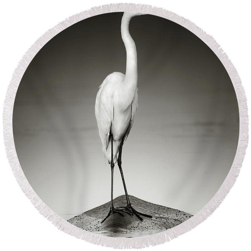 Egret Photographs Round Beach Towels