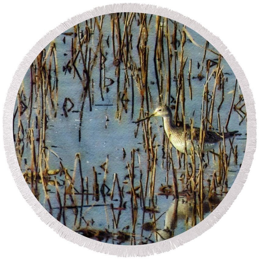 Fowl Round Beach Towel featuring the photograph Greater Yellowleg In Reeds by Rrrose Pix
