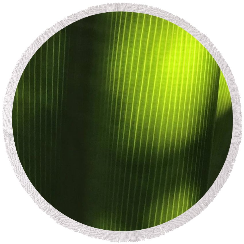 Tropical Leaves Round Beach Towel featuring the photograph Green Illusions by Pamela Bushnell