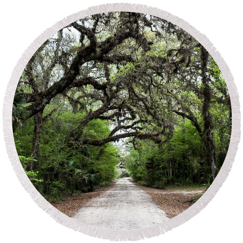Landscape Round Beach Towel featuring the photograph Green Swamp Tunnel by Norman Johnson