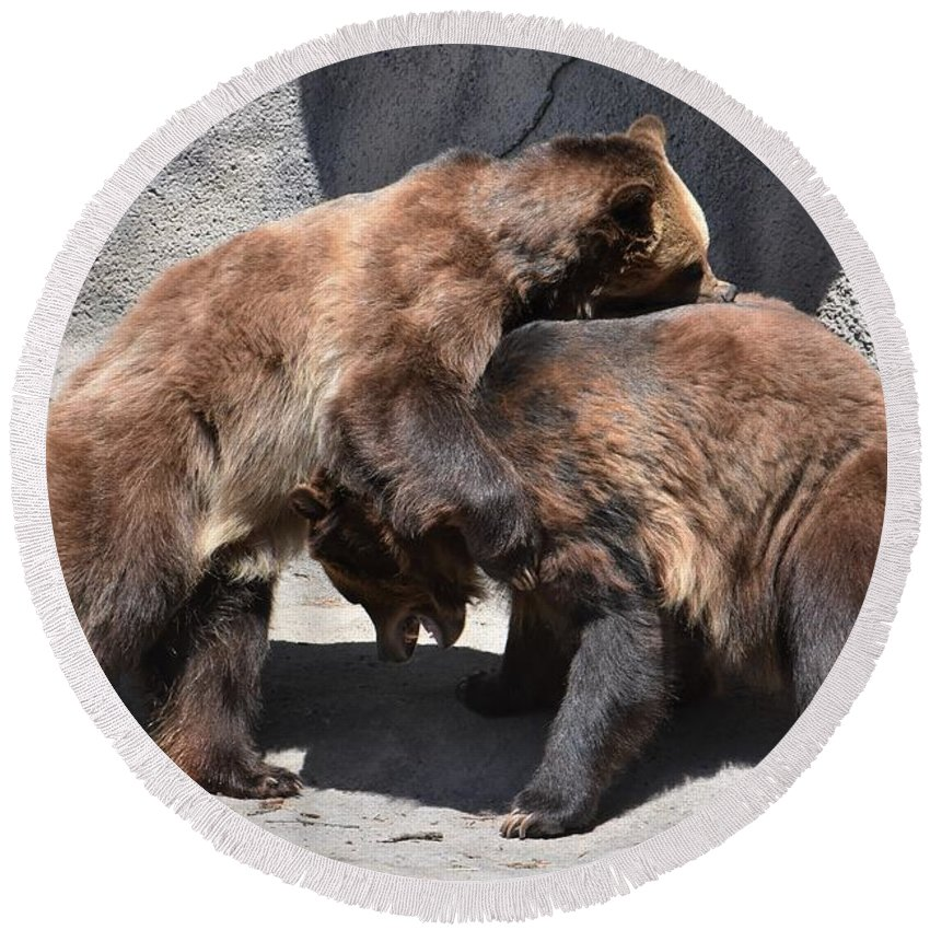 Grizzly Bear Round Beach Towel featuring the photograph Grizzlies' Playtime 4 by Flo McKinley