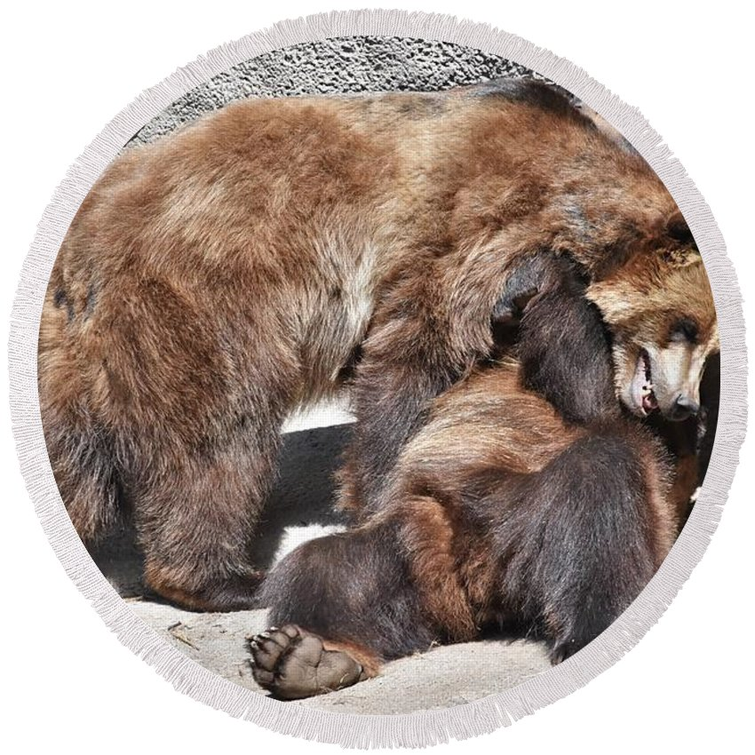 Grizzly Bear Round Beach Towel featuring the photograph Grizzlies' Playtime 5 by Flo McKinley