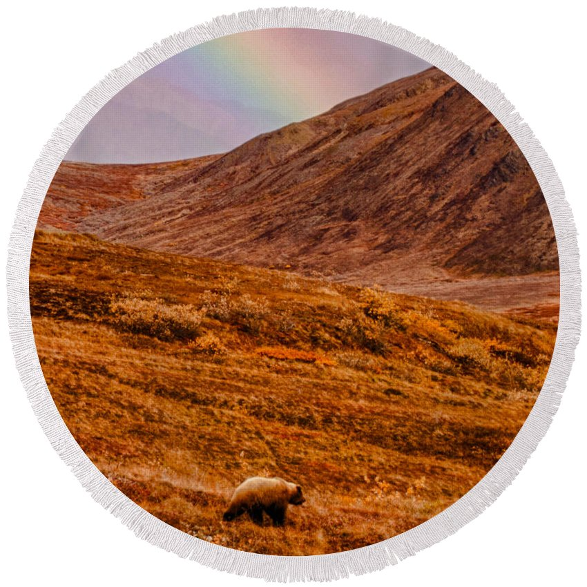#jefffolger Round Beach Towel featuring the photograph Grizzly Under The Rainbow by Jeff Folger