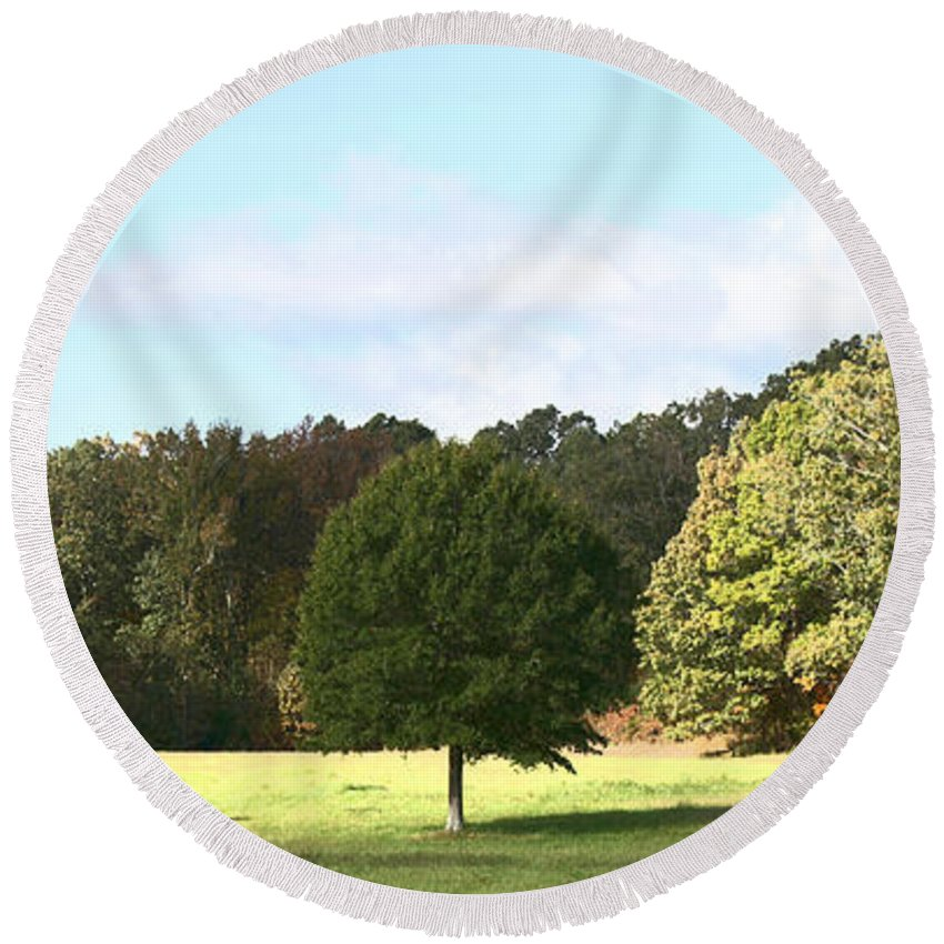 Tree Round Beach Towel featuring the photograph Growing Up by Amanda Barcon