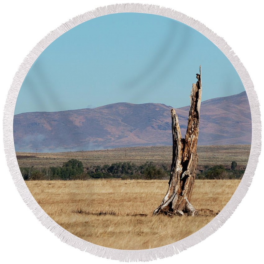 Lamoille Round Beach Towel featuring the photograph Guardare Fuori by Frank Henley
